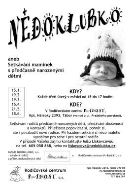 1_NEDOKLUBKO_2013_A4