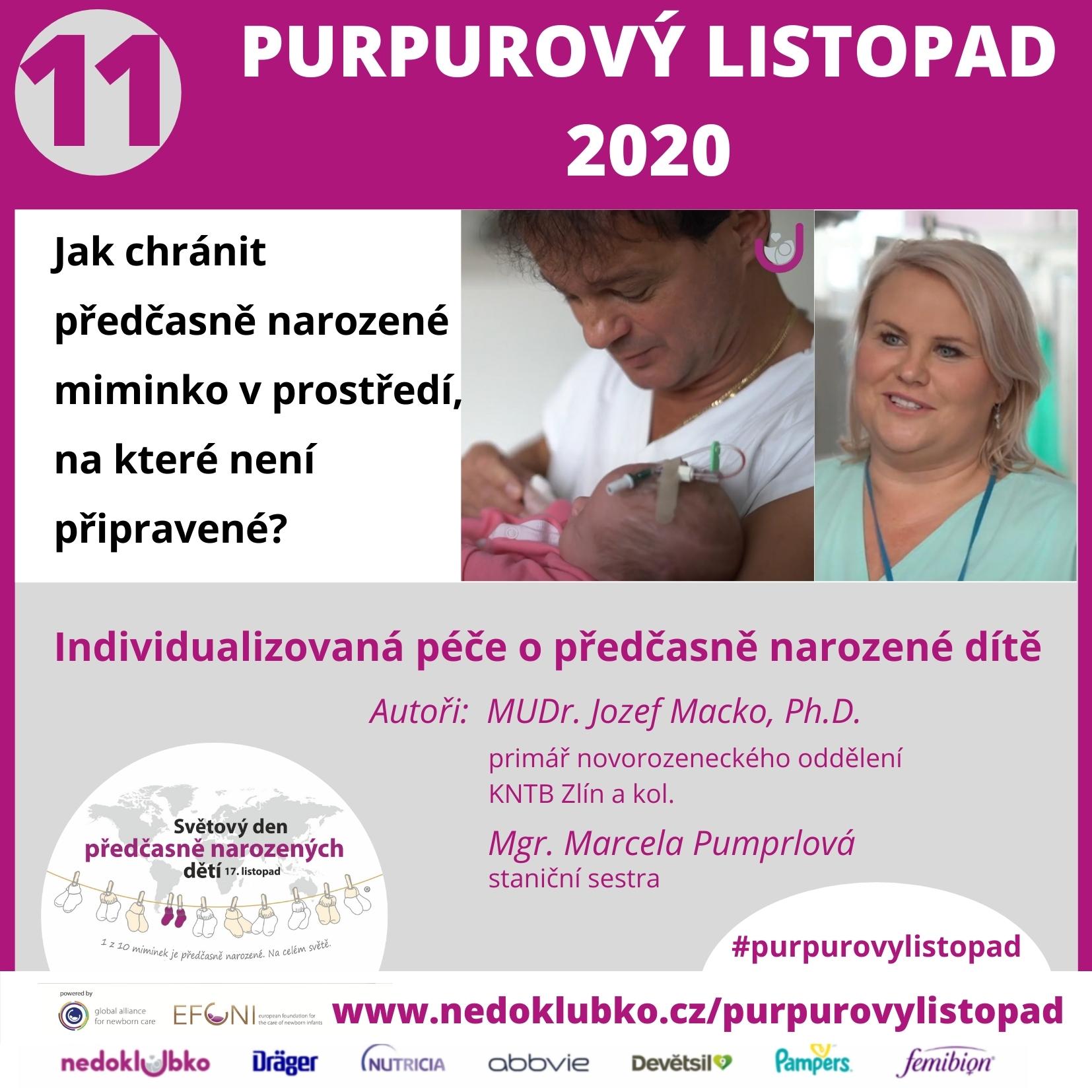 Purpurový listopad 11 Macko (3)