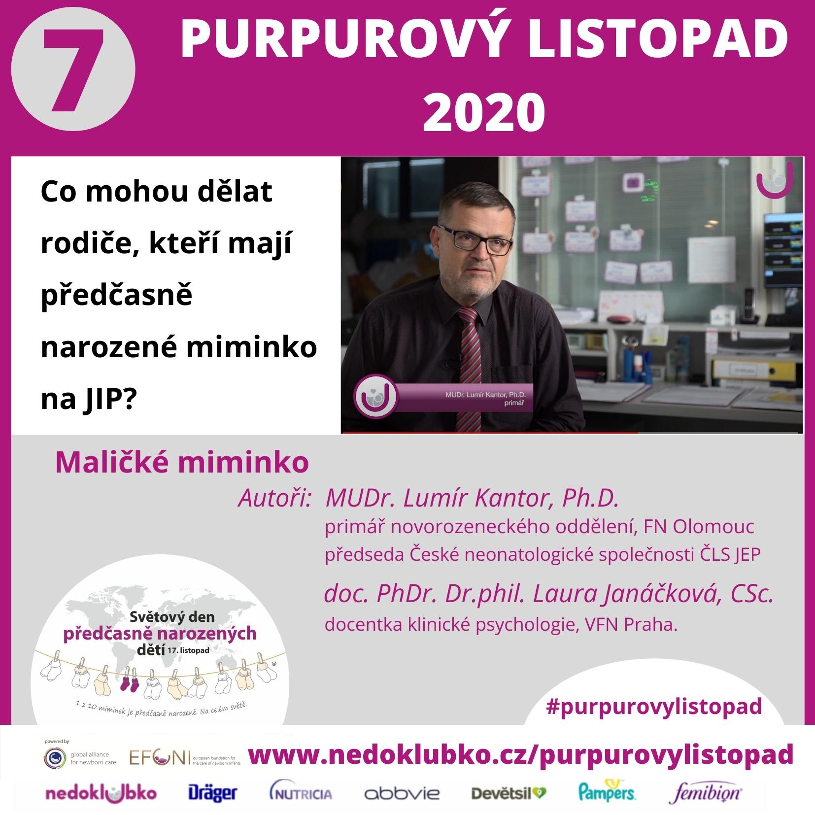 Purpurový listopad Kantor (1)
