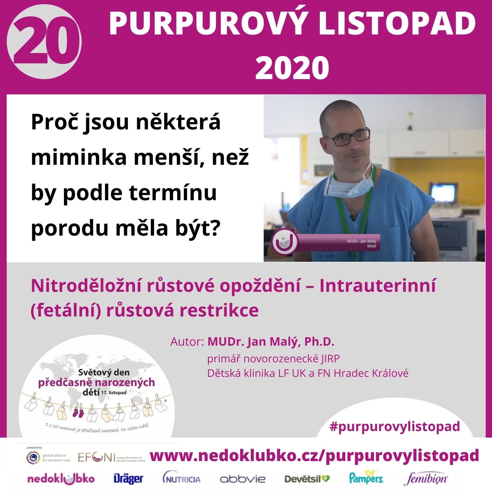 Purpurový listopad20 (1)