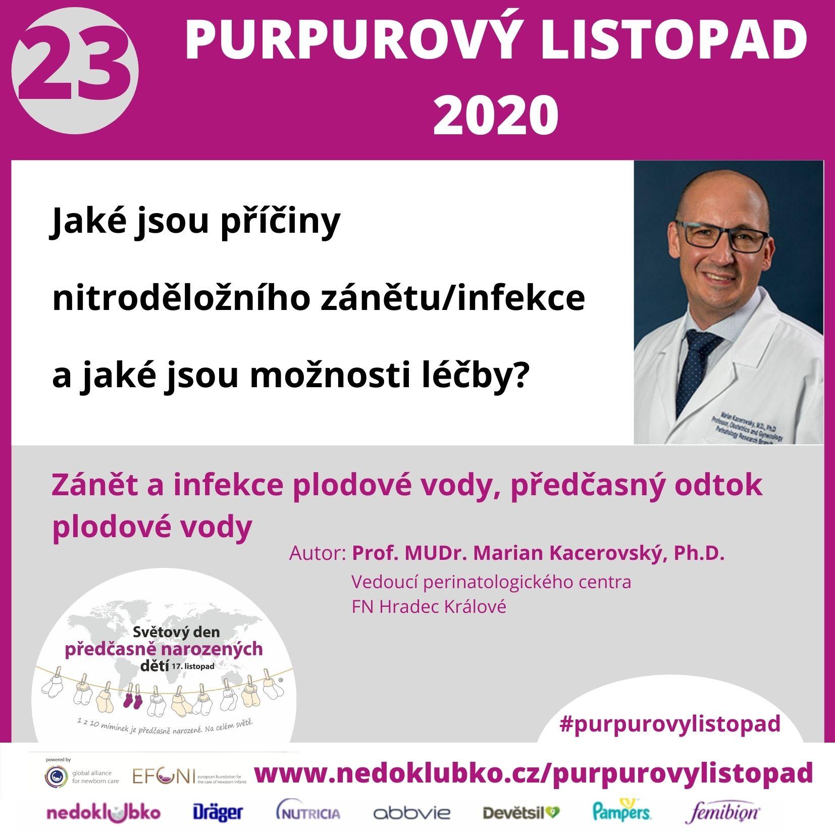Purpurový listopad23 (2)