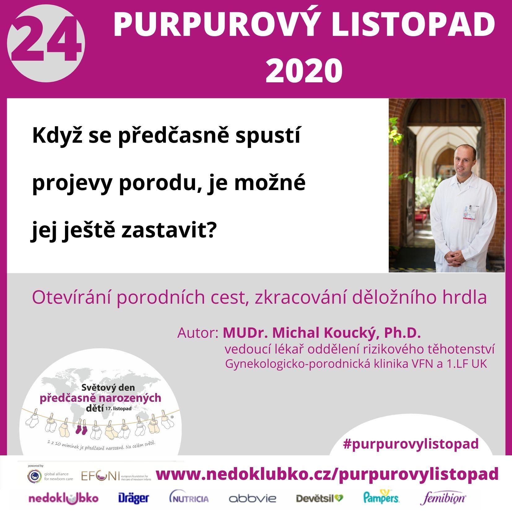 Purpurový listopad24 (1)